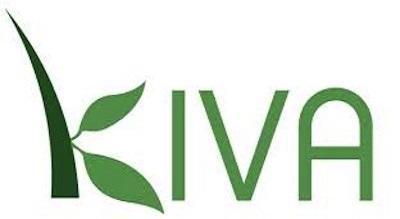 Kiva Loans Image